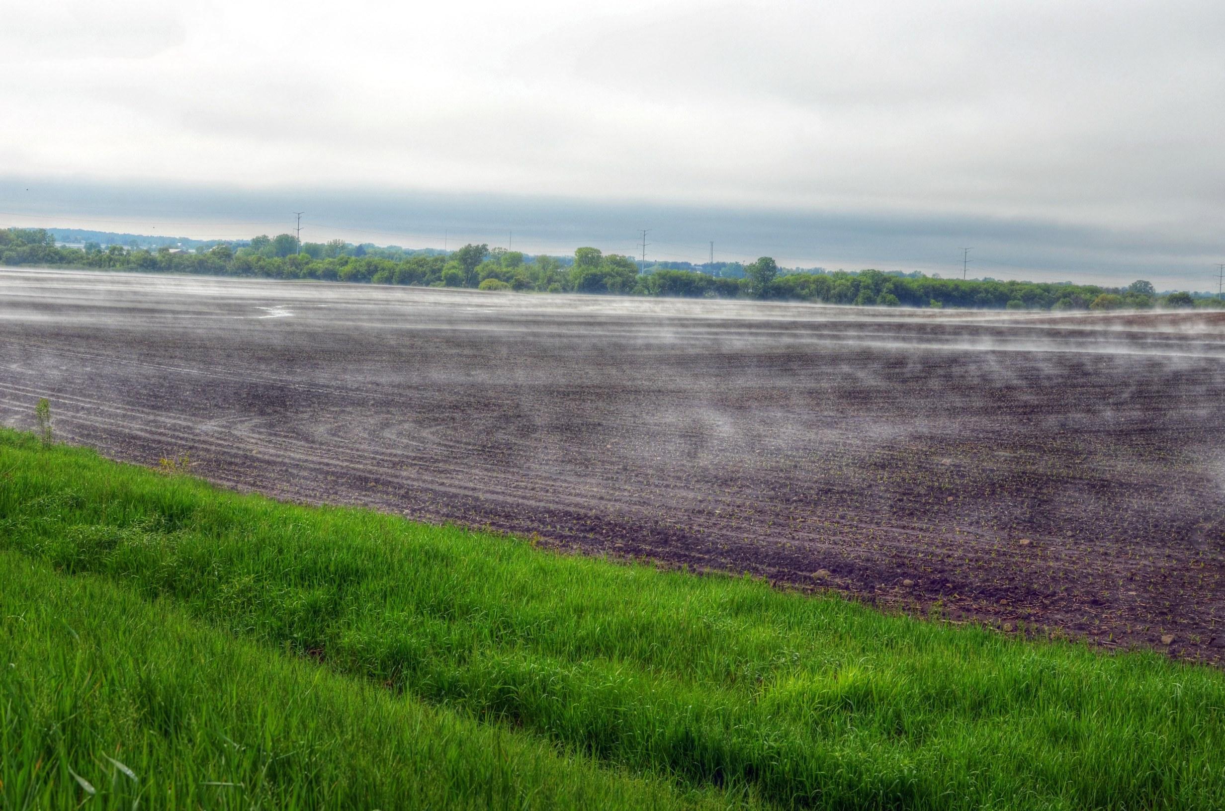 Field Fog 1 Enhanced