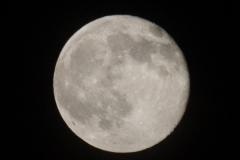 11 Moon Biggers