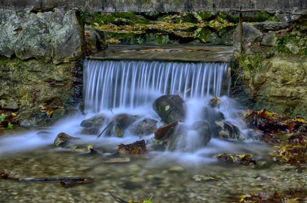 Paradise Springs 1