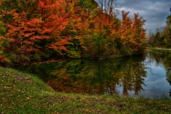 Spectacular Fall Colors 5