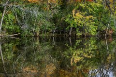 Spectacular-Fall-Colors-7