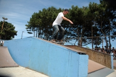 Lake FX 07 Skateboard 21
