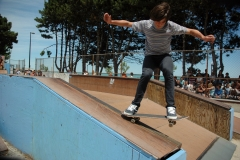 Lake FX 07 Skateboard 24