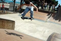 Lake FX 07 Skateboard 31