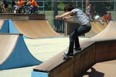 Lake FX 07 Skateboard 7